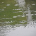 穀雨の長雨