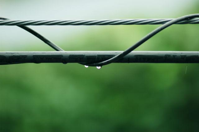 梅雨の日の雨