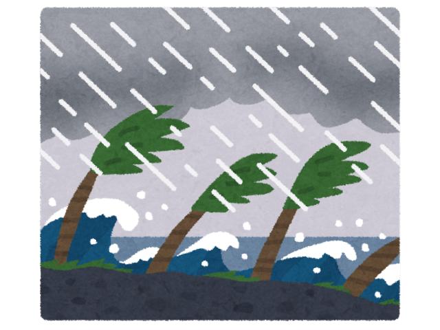 暴風雨で木がなびいている