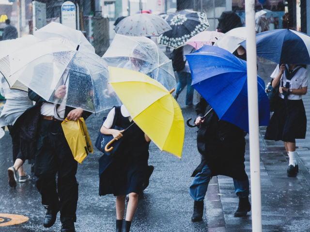 台風で傘をさすのが精いっぱいの様子