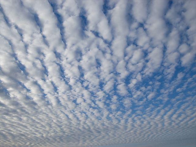 うろこ雲、秋空