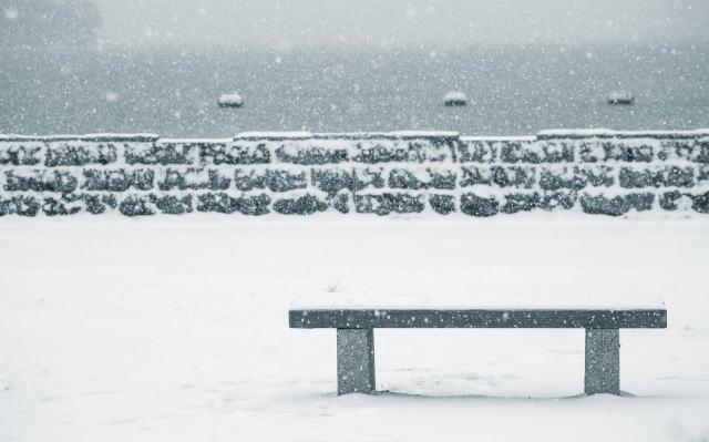 ベンチと道路に雪が積もっている