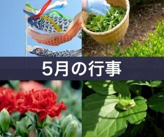 5月の行事(鯉のぼり、茶摘み、カーネーション、葉の上の蛙)