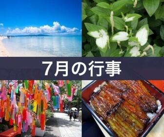 7月の行事(夏の海、烏柄杓、七夕祭、土用の丑の日)