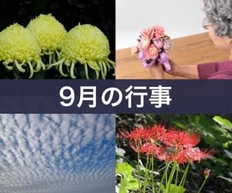 9月の行事(重陽の節句・敬老の日・うろこ雲・彼岸花)