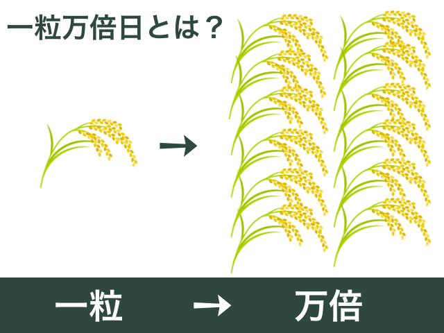 一粒万倍日(イメージ図)